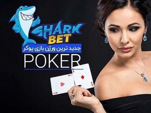 پشتیبانی 24 ساعته در آدرس سایت sharkbet